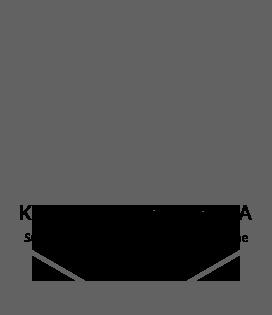 Kompleksowa oferta ikona